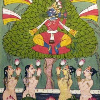 Capsule :  Krishna volant les vêtements des gopis